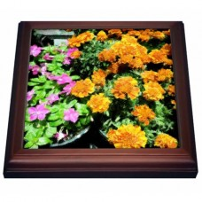 3dRose Flower Pot Pretty, Trivet with Ceramic Tile, 8 by 8-inch